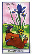 Page of Coins Tarot card in Herbal deck