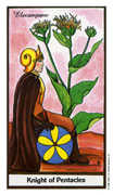 Knight of Coins Tarot card in Herbal deck