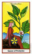 Queen of Coins Tarot card in Herbal deck