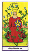 King of Coins Tarot card in Herbal deck