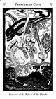 hermetic - Princess of Cups