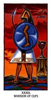 Warrior of Cups Tarot Card - Ibis Tarot Deck