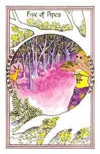 Five of Wands Tarot Card - Medicine Woman Tarot Deck