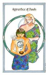 Apprentice of Bowls Tarot Card - Medicine Woman Tarot Deck