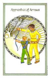 Page of Swords Tarot Card - Medicine Woman Tarot Deck
