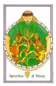 Valet of Coins Tarot Card - Medicine Woman Tarot Deck