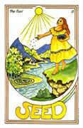 The Fool Tarot card in Medicine Woman deck