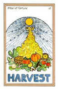 Wheel of Fortune Tarot card in Medicine Woman deck