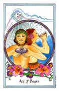 Ace of Bowls Tarot card in Medicine Woman deck