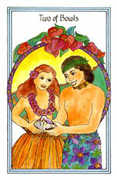 Two of Bowls Tarot card in Medicine Woman deck