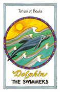 Totem of Bowls Tarot card in Medicine Woman Tarot deck