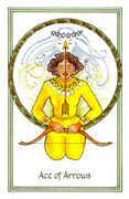 Ace of Arrows Tarot card in Medicine Woman Tarot deck