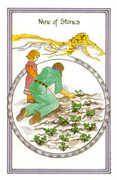 Nine of Stones Tarot card in Medicine Woman deck
