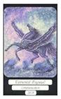 merryday - Pegasus