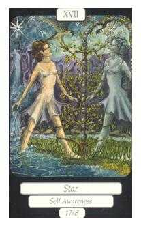 The Star Tarot Card - Merry Day Tarot Deck