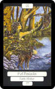 Nine of Coins Tarot card in Merry Day deck
