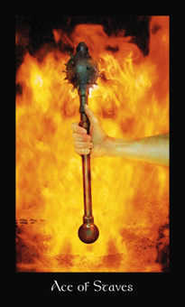 Ace of Fire Tarot Card - Modern Medieval Tarot Deck