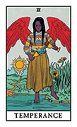 Temperance Tarot card in Modern Witch deck