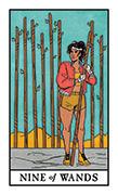 Nine of Wands Tarot card in Modern Witch deck