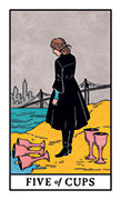 Five of Cups Tarot card in Modern Witch deck