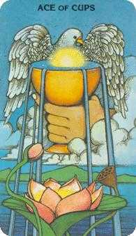 Ace of Cups Tarot Card - Morgan-Greer Tarot Deck