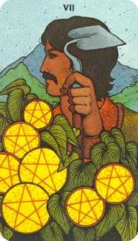 Seven of Coins Tarot Card - Morgan-Greer Tarot Deck