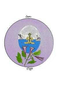 Brother of Water Tarot Card - Motherpeace Tarot Deck