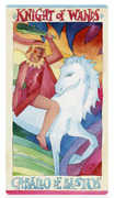 Knight of Wands Tarot card in Napo Tarot deck