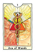 Ace of Wands Tarot card in New Chapter deck