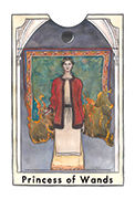 Page of Wands Tarot card in New Chapter deck