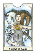Knight of Cups Tarot card in New Chapter deck