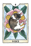 Six of Disks Tarot card in New Chapter deck