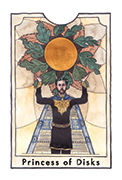 Page of Disks Tarot card in New Chapter deck