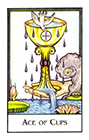new-palladini-tarot - Ace of Cups