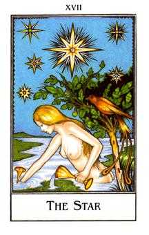 The Star Tarot Card - The New Palladini Tarot Deck