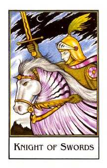 Knight of Spades Tarot Card - The New Palladini Tarot Deck