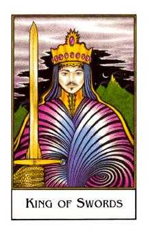 Roi of Swords Tarot Card - The New Palladini Tarot Deck