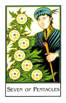 Seven of Coins Tarot Card - The New Palladini Tarot Deck