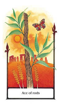 Ace of Wands Tarot Card - Old Path Tarot Deck