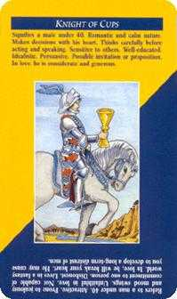 Knight of Water Tarot Card - Quick and Easy Tarot Deck