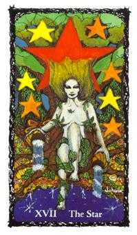 The Star Tarot Card - Sacred Rose Tarot Deck