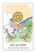 Ace of Coins Tarot card in Simplicity deck