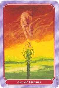 Ace of Wands Tarot Card - Spiral Tarot Deck