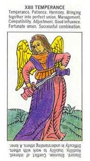 The Guide Tarot Card - Starter Tarot Deck
