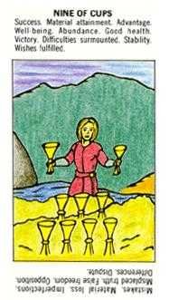 Nine of Bowls Tarot Card - Starter Tarot Deck