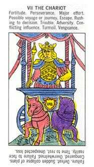 The Chariot Tarot Card - Starter Tarot Deck