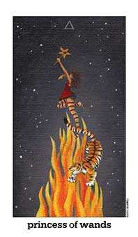 Valet of Wands Tarot Card - Sun and Moon Tarot Deck