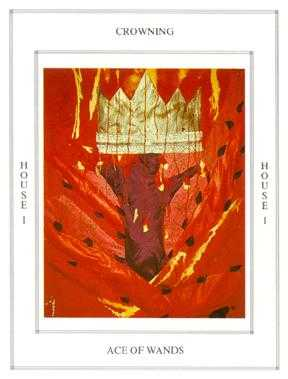Ace of Rods Tarot Card - Tapestry Tarot Deck