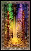 Two of Wands Tarot card in Tarot Grand Luxe deck