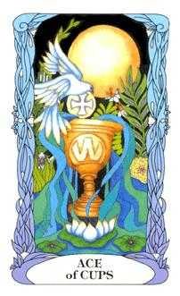 Ace of Cups Tarot Card - Tarot of a Moon Garden Tarot Deck